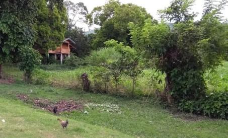 Rural Kalinga